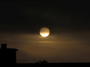 moon_true_scot_sm