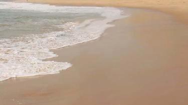 beach_rev_brianinang.jpg